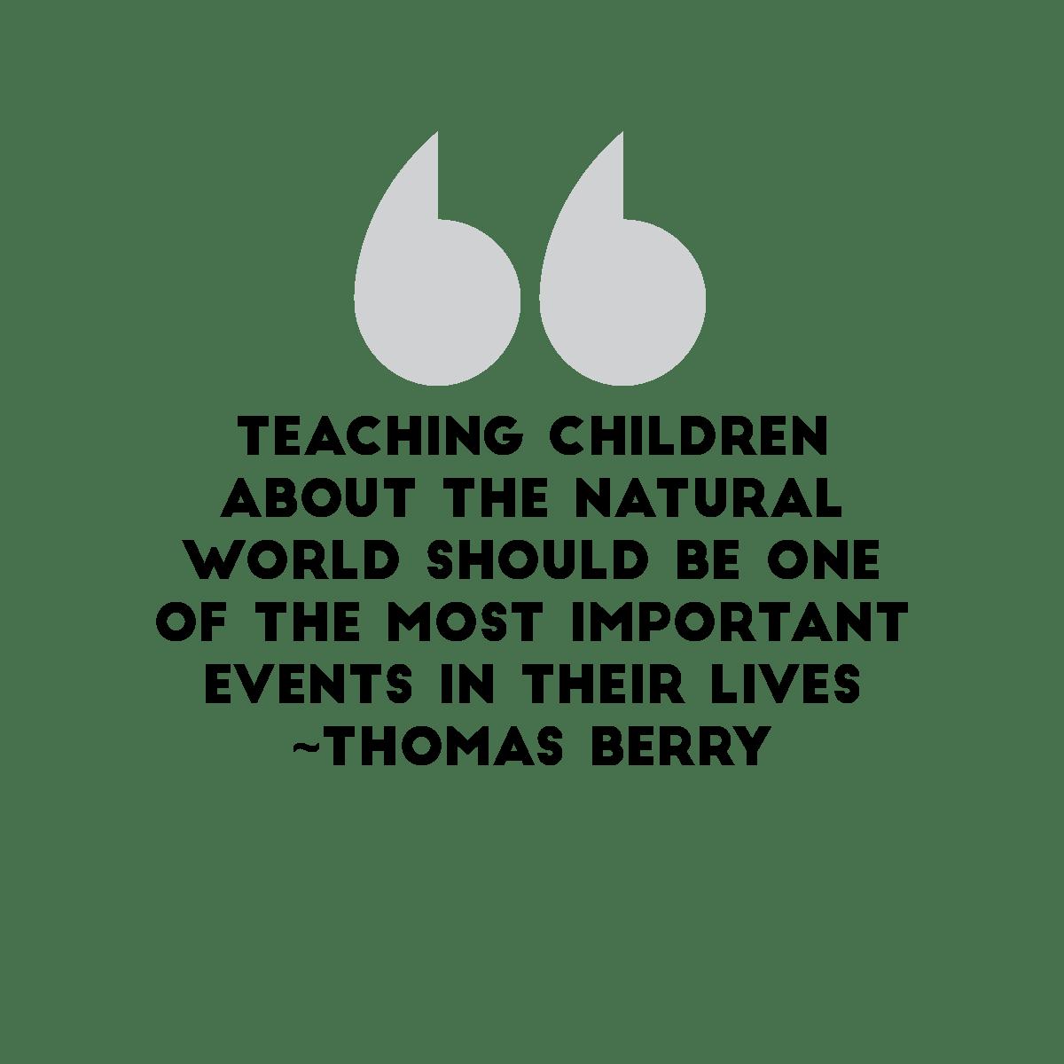thomas berry quote